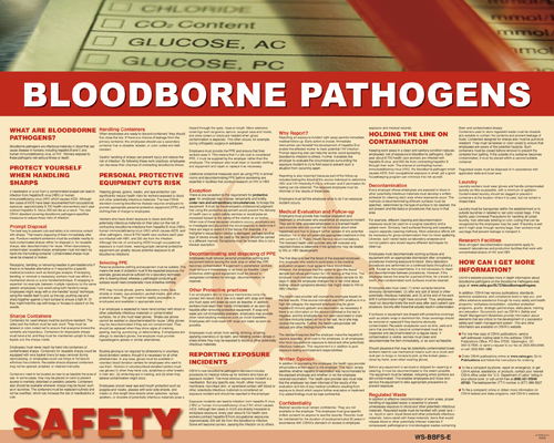 Bloodborne Pathogens Poster Workplace Safety Posters