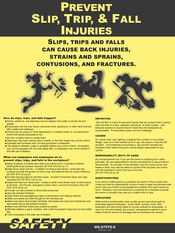 Slips, Trips, & Fall Injuries Poster